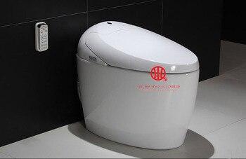 Скрытая камера на биде в женском туалете