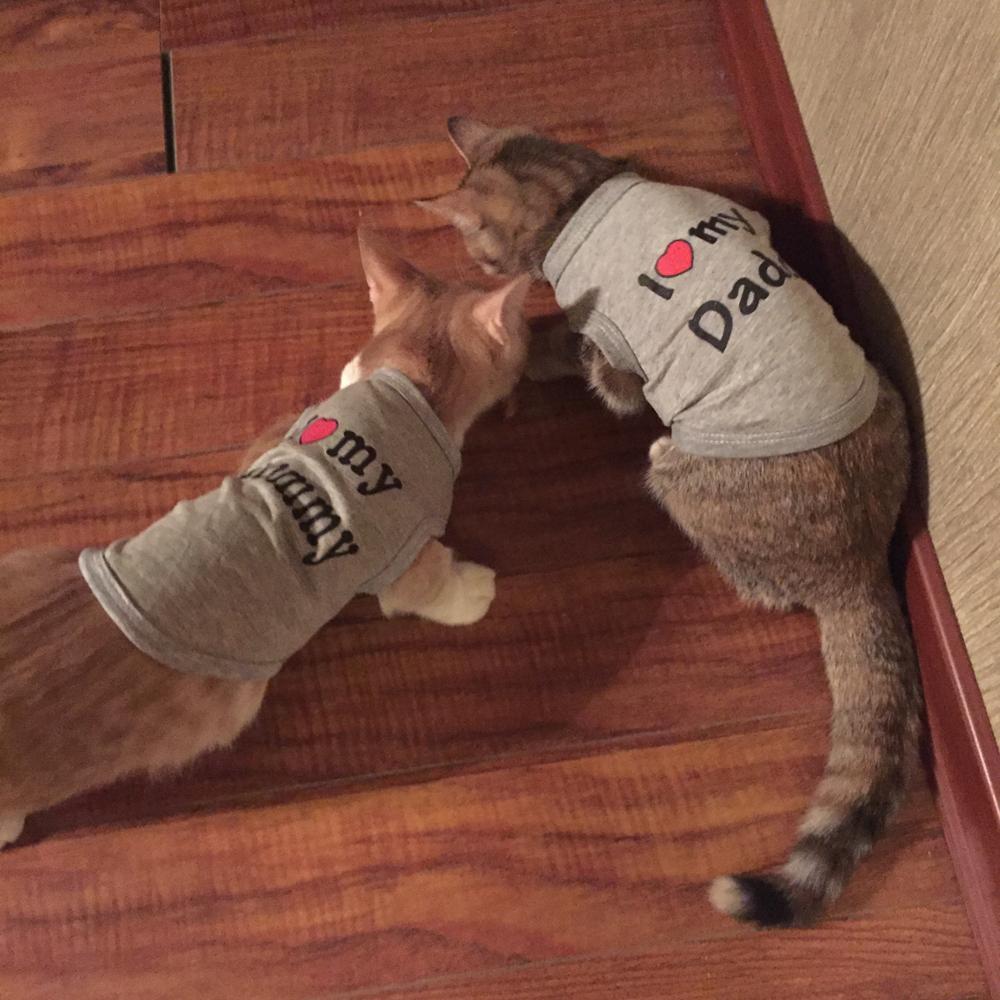 """""""I ♥ You Mommy"""" Cotton Cat Vest"""