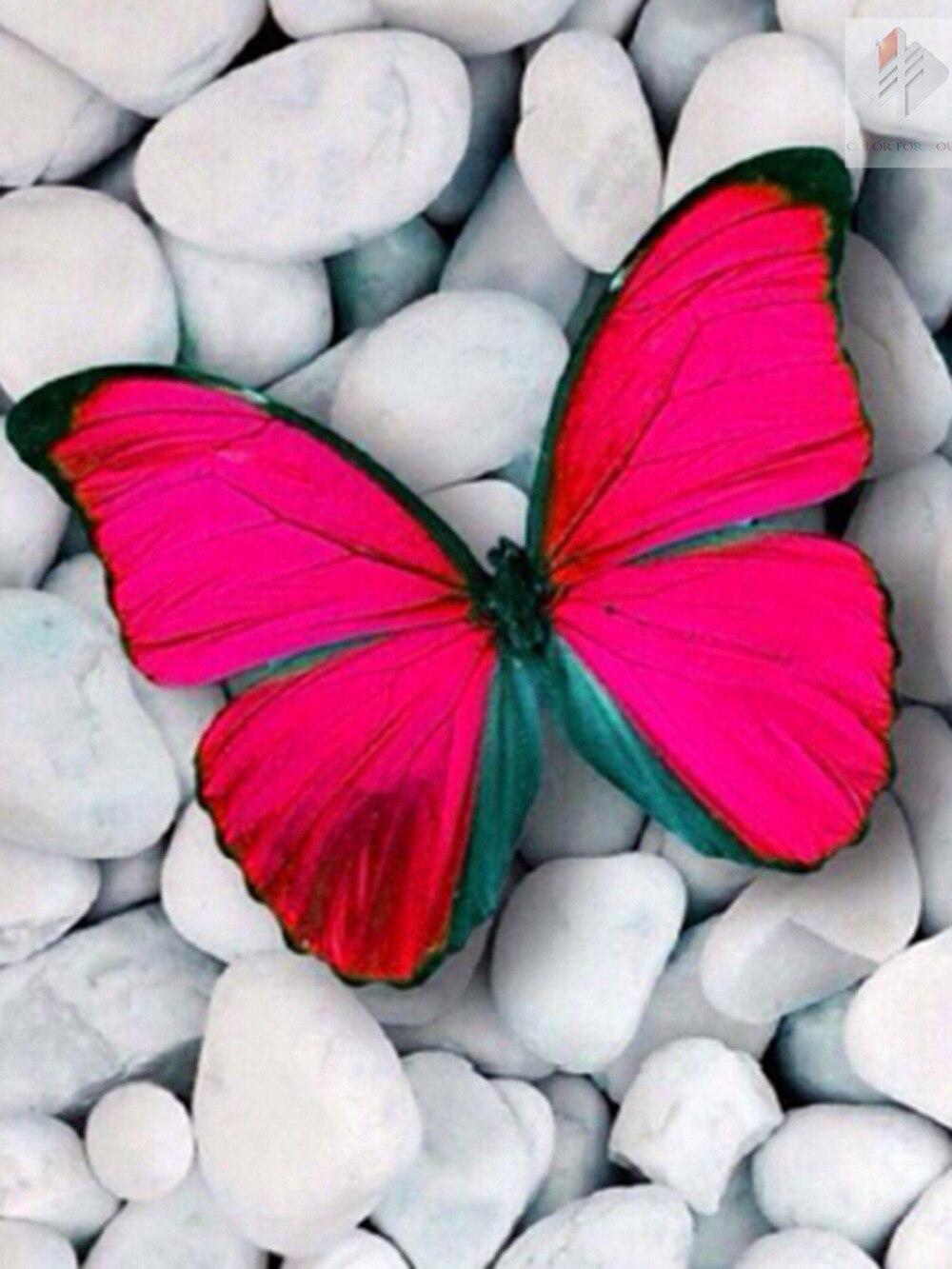 diy gyémánt festés pillangók négyzet strasszos keresztöltés 5d - Művészet, kézművesség és varrás