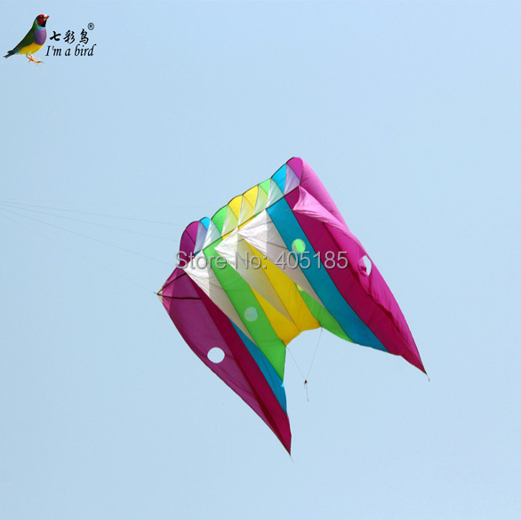 Free Shipping Outdoor Fun Sports Power Software Piloting Kite Good Flying Factory Outlet