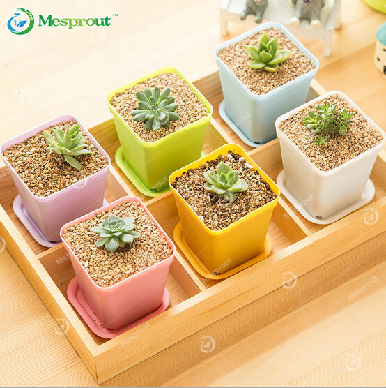 7 Pcs Pack Korean Wholesale Flower Pots Plastic Pots