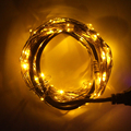 Christmas/Wedding/Party Decoration Lights Outdoor Lighting 100 LED 10M USB  String Light Copper Wire Home Decoration