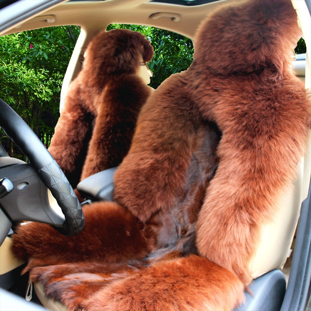 Universal Heated Full Fur Leather Wolf Car Seat Covers Cushion Winter Wool Heat