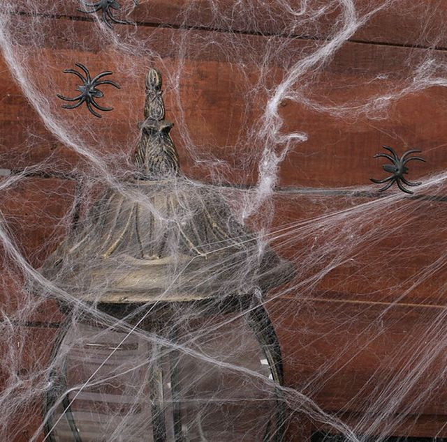 Halloween Spider Web With Spiders Multi Colored Webbing For
