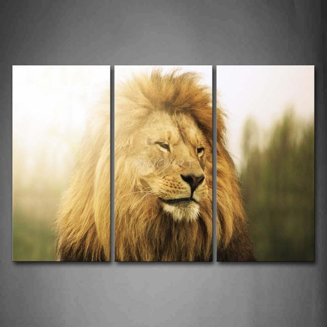 3 Piece Wall Art Painting Lion Staring Head Picture Print On Canvas ...