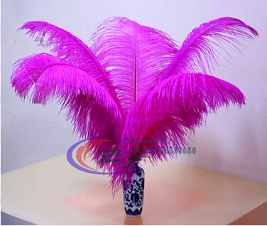 50pcs lot 50 55cm Hard Rod Ostrich Feathers Fuschia Feather For Craft Ostrich Plumes Wedding Party