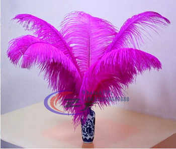 50pcs/lot 50-55cm Hard Rod  Ostrich Feathers Fuschia Feather For Craft Ostrich Plumes Wedding Party Decoration 20-222inches - DISCOUNT ITEM  0% OFF All Category