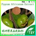 100% Natural organic Extrato de Pygeum/Pygeum Africanum Extrato em pó 100 g/lote