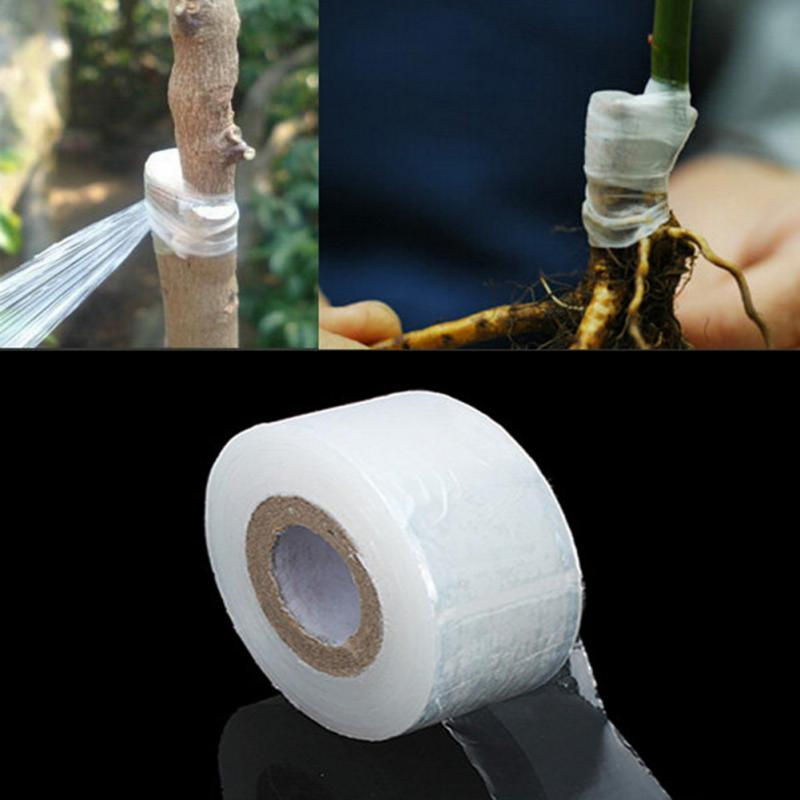 100m Flower Vegetable Grafting Tape Garden Degradable Plants Seedling Tools studies on grafting in some vegetable crops