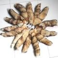 1 UNID Caliente Large Fox Tail Fur Tassel Bag Tag Llavero Correa Cadena Herramienta de Masaje