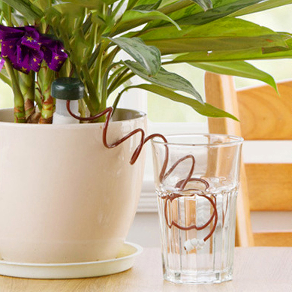 House Plant Self Watering System on diy automatic watering system, house plant palm tree, house plant watering devices, house plant water system, indoor house plant watering system, diy house plant watering system, house plants with red leaves, house plant automatic watering system,
