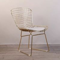 Free shipping U BEST Simple coffee restaurant back iron metal creative leisure wire electroplating gold hollow dining chairs