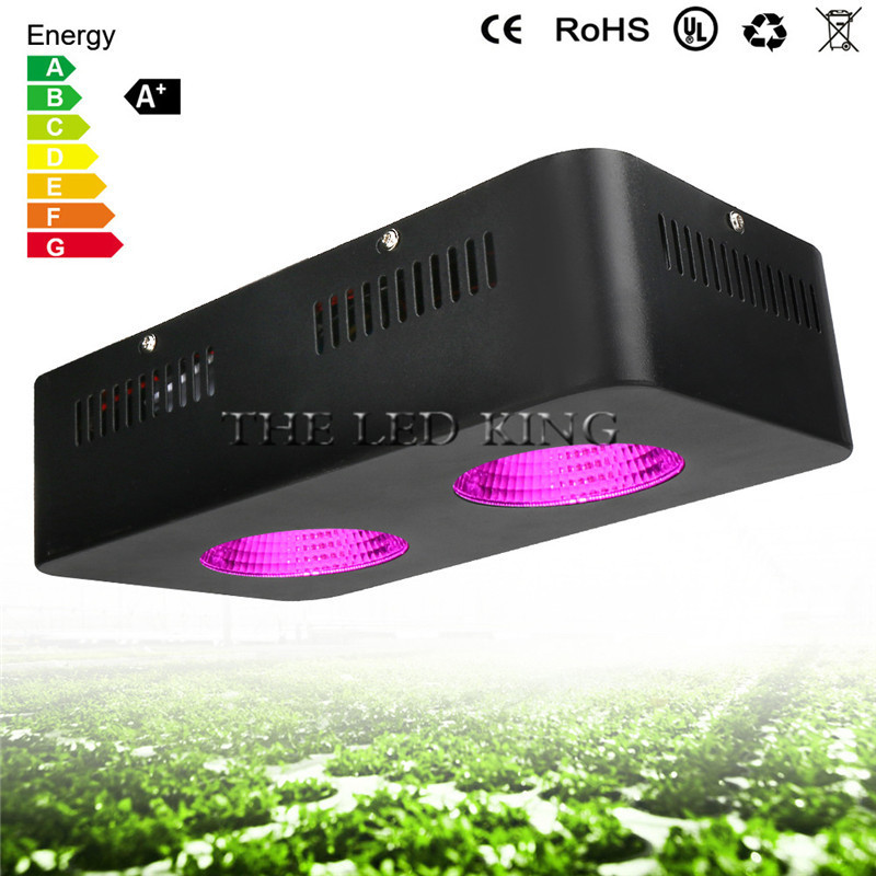 Aliexpress Com Buy 1000w Led Grow Light Panel Red Blue