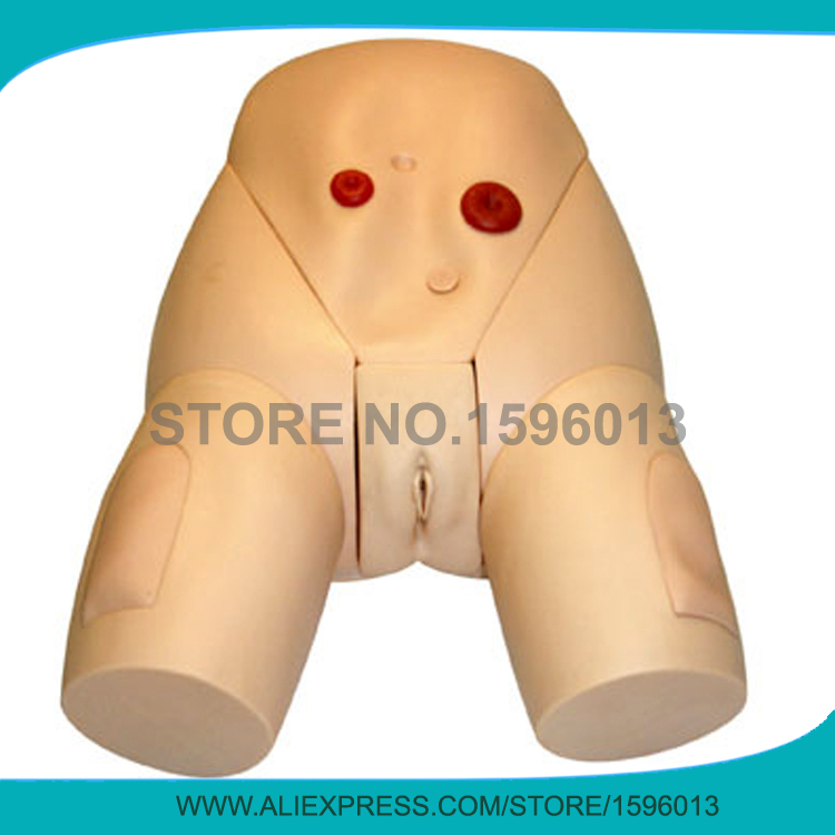 Advanced Female Urethral Catheterization Manikin,Urine Catheter Nursing Simulator economic basic patient care manikin female nursing manikin nursing mannequin