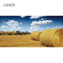 Laeacco Nature Scenic Harvest Golden Wheat field Photography Backgrounds Customized Photographic Backdrops For Photo Studio