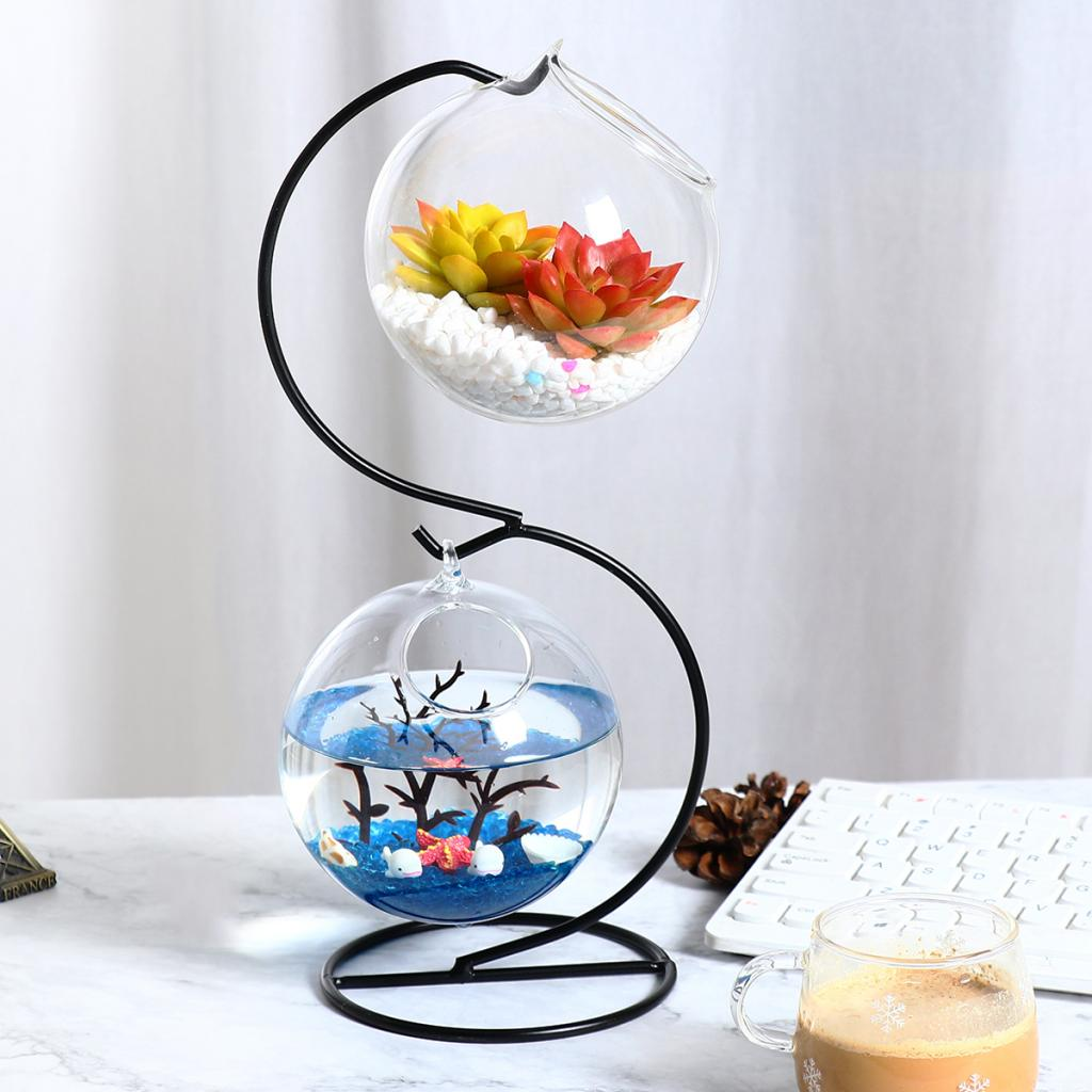 Idee Deco Vase Rond top 8 most popular round glass aquariums ideas and get free