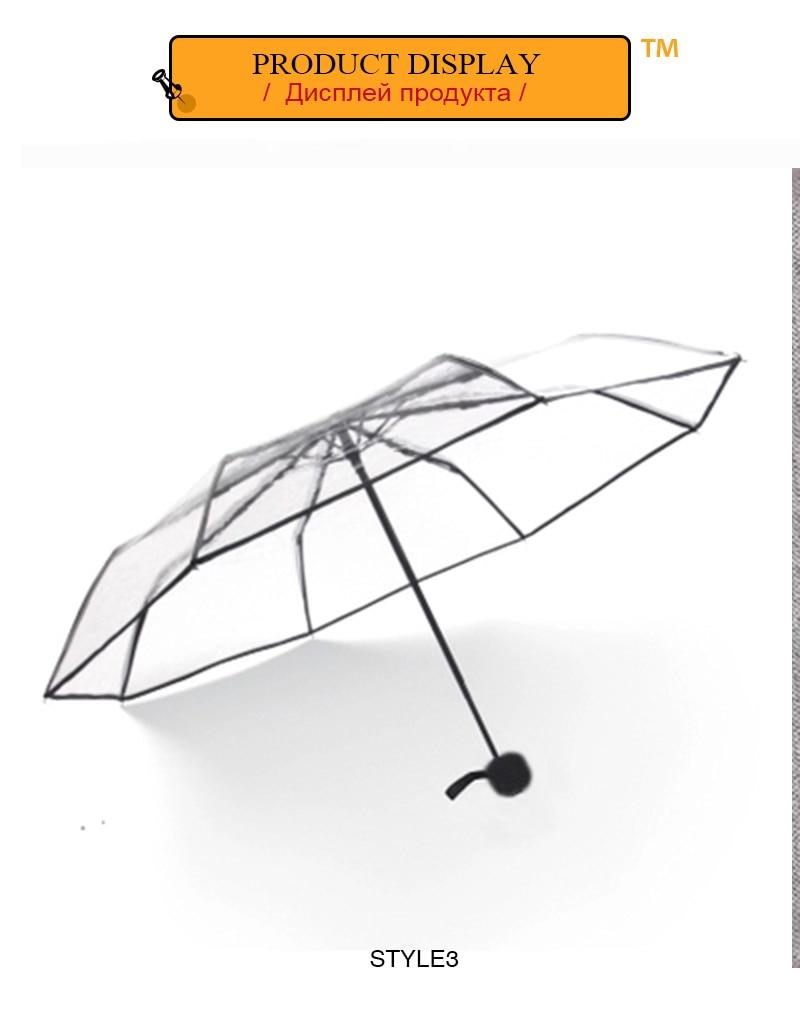 parapluie transparent1 (5)