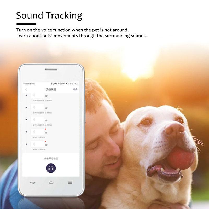 Accuracy GPS Tracker Collar (13)
