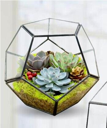 Europaische Mini Gewachshaus Glas Micro Landschaft Neue Kombination