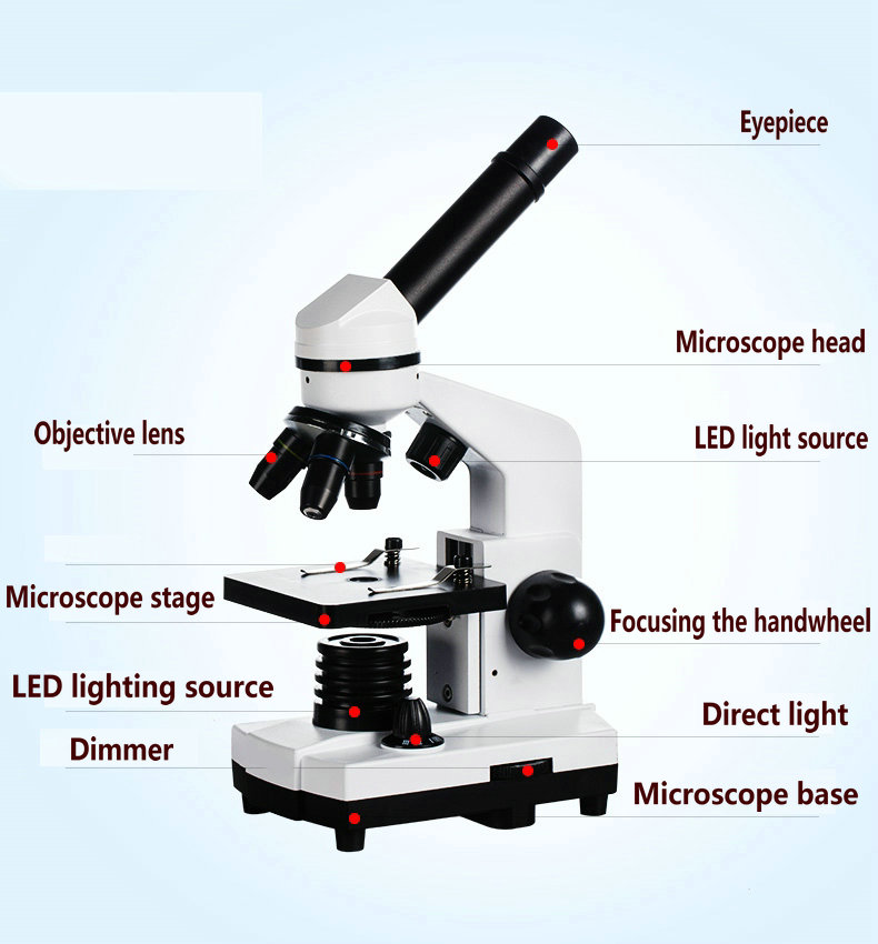 NEW Skydust Biological Microscope 1600X Magnification Student Microscope Science experiment + 2.0MP COMS USB Electronic Eyepiece professional biological microscope 1600x student education science child toys microscope