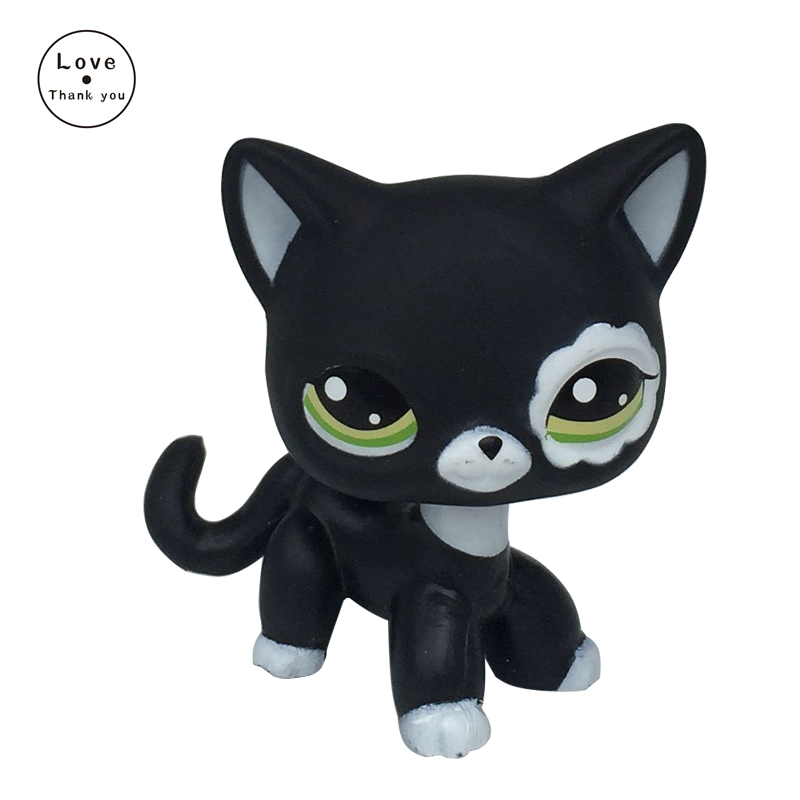 Rare pet Toys Short Hair Cat #2249 Black Old EUROPEAN kitten Lovely Birthday Gift For Child lps pet shop short hair kitty and dog collection classic animal pet cat free shipping toys action figures kids toys gift