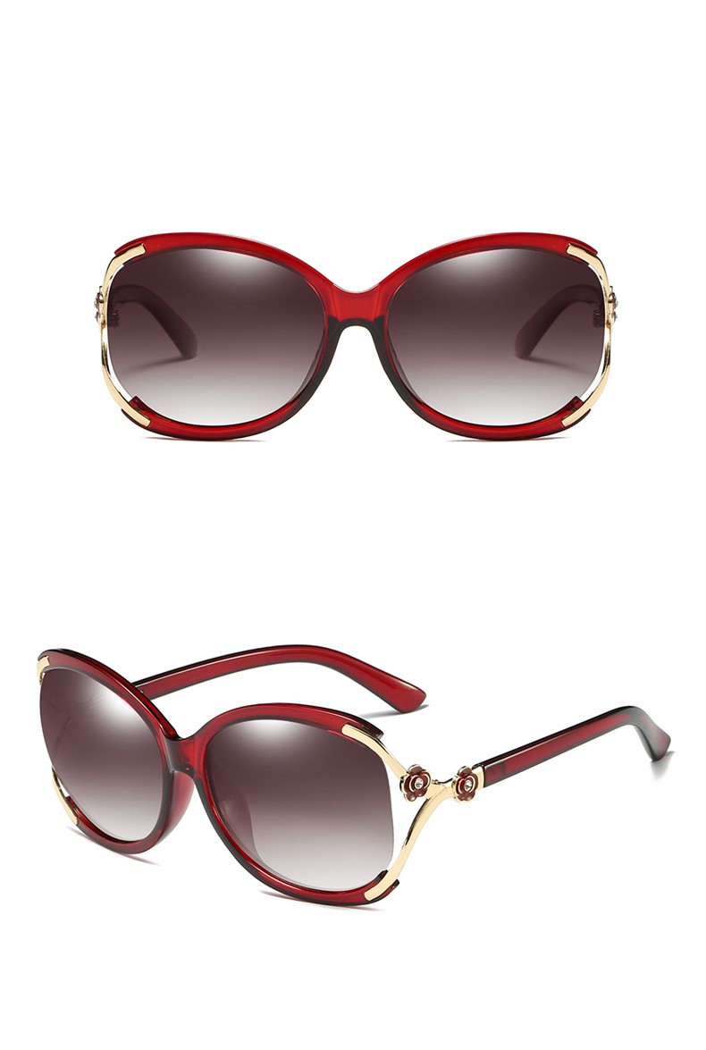Women Polarized Sunglasses (10)