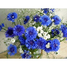 5D DIY Diamond mosaic diamond embroidery White and blue flowers  embroidered Cross Stitch Home decoration Gift