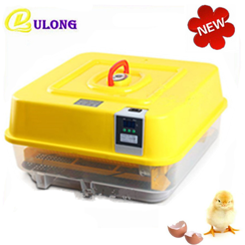 Best Price mini mul-function automatically incubator 39 chicken eggs hatcher machine equipment brooder tool household mini small eggs incubator auto hatchers poultry hatching machine equipment tool electric chicken brooder