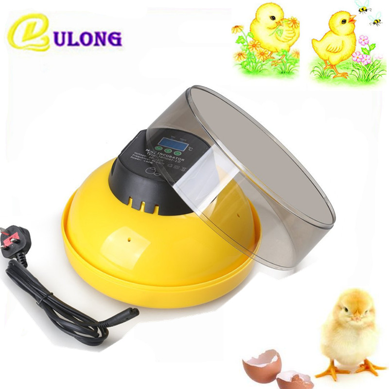 Home use electric chicken eggs incubator mini small brooding equipment 10 eggs hatchers for chicken quail salter air fryer home high capacity multifunction no smoke chicken wings fries machine intelligent electric fryer