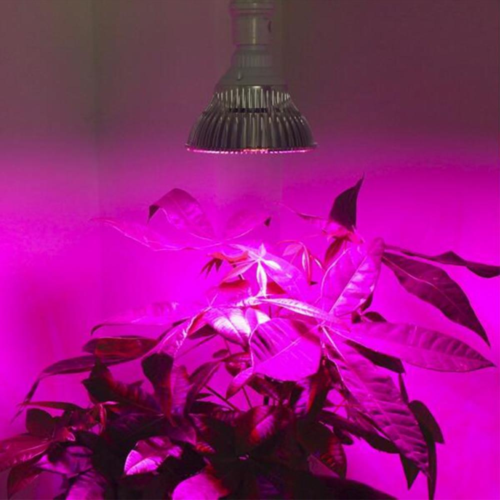 Mini Grow Light لامپ تمام طیف 5W / 9W / 12W / 24W / 45W برای هیدروپونیک و گیاهان کوچک LED با کیفیت بالا چراغ رشد