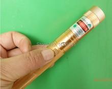 2016 green laser pointers SD Laser 303 80000mw 80w 532nm high power focusable burn match,burn cigarettes,pop balloon+safe key