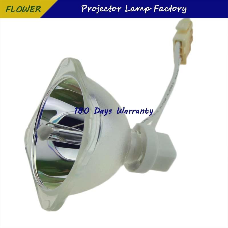 Лампа проектора 5J.J5205.001 для BENQ MS500/MS500 +/MS500P/MS500 V/MX501/MX501V/MX501 V/TX501 Гарантия 180 дней