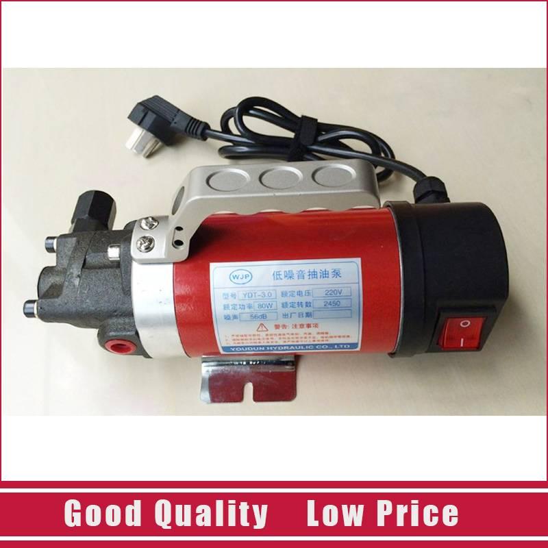 Cast Iron Micro Oil Transfer Pump 12V Electric 5L/min Gear Oil Pump