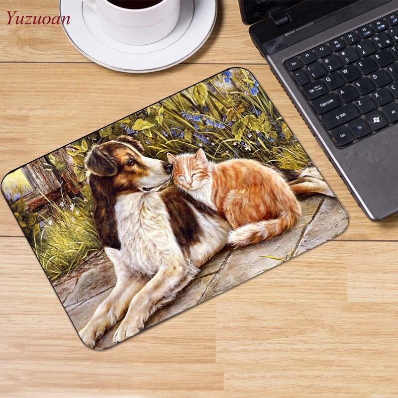 1Cats_Wood_planks_Kittens_Hat_521570_1280x854 (3)