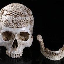Череп из смолы, анатомическая голова человека, медицинская модель, медицинское искусство, школьные принадлежности для обучения, игрушки, подарки на Хэллоуин