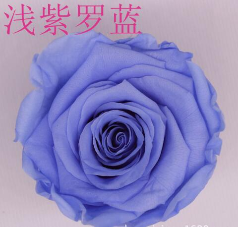 Hot Sale 8pcs / Lot, 4-5cm, Preserved Flower, DIY Eternal Roses .A Grade Quality Teacher Section Father s Day Carnations ...