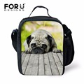 Boys Children Stylish Cat Dog Insulated Lunch-bag for Kids Girls Animal Panda Pattern Messi  lunch Bag Box for School Picnic