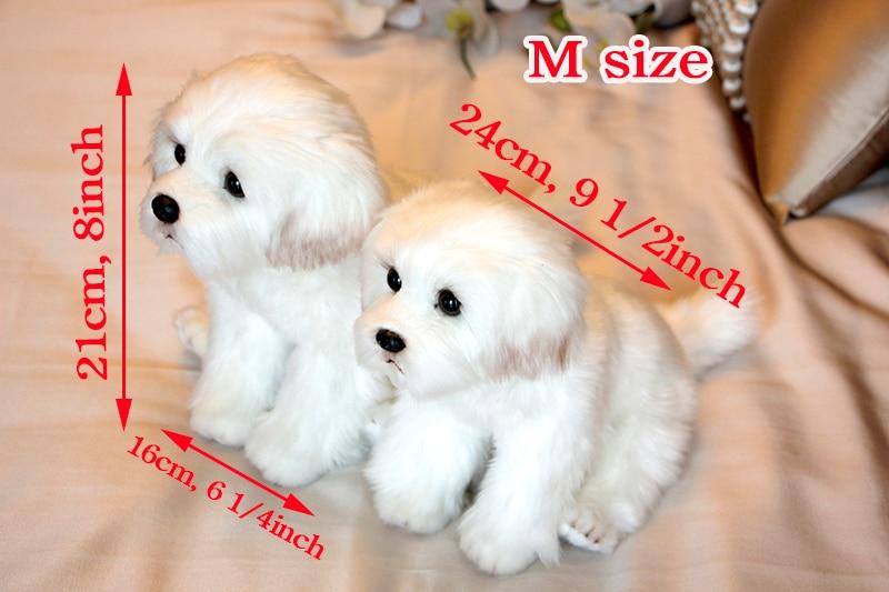 _MG_0376-M size