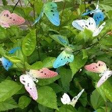 Butterfly Light