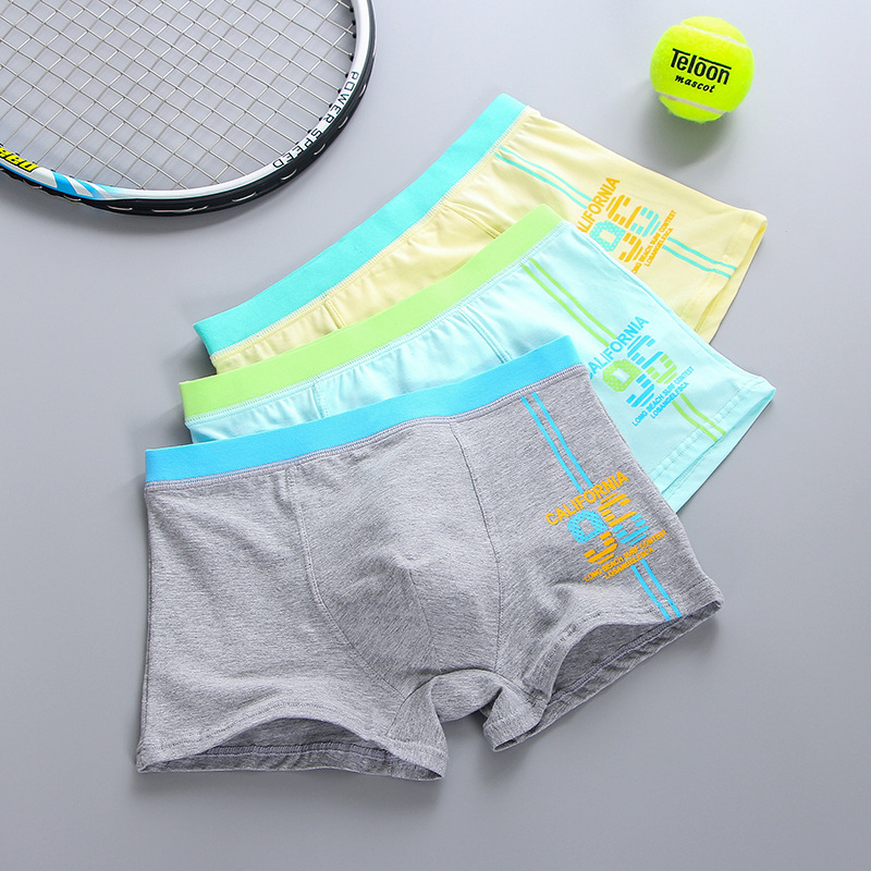 2017 New Teenage panties 5pcs / lot boys flat pants RC cotton cotton underwear high quality Boys and girls underwear 2-14year