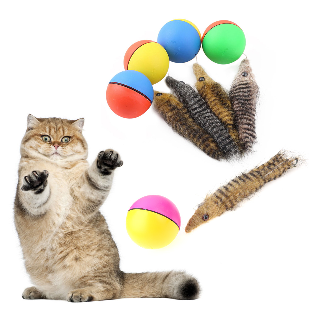 1Pcs Cat Toys Beaver Weasel Rolling Motor Ball Toy for Pet Cat Dog Kids Jumping Fun Moving Chaser Pet Products(China)