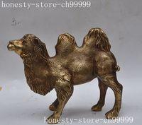 Китай китайский медь латунь фэншуй животных Верблюд Ламы Благоприятный лаки статуя хэллоуин