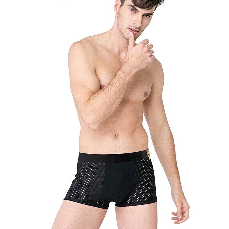 Innersy 2016 трусики мужские 4 шт.  много underwear мерил боксеры модальные боксеры мужчины   боксер вентиляция плюс размер боксеры mens underwear