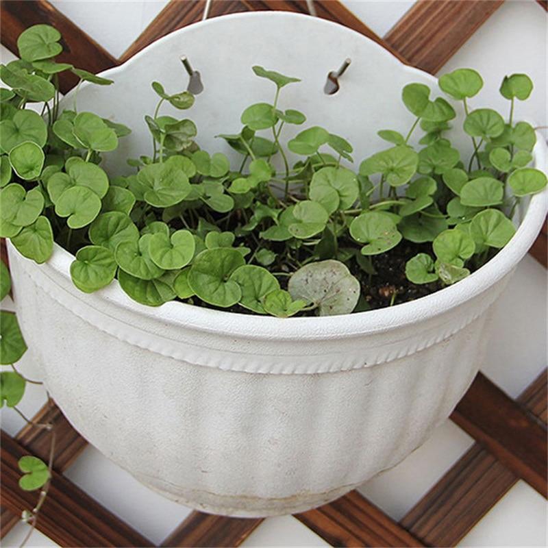 Lovely DIY Garden Hanging Wall Baskets Pot