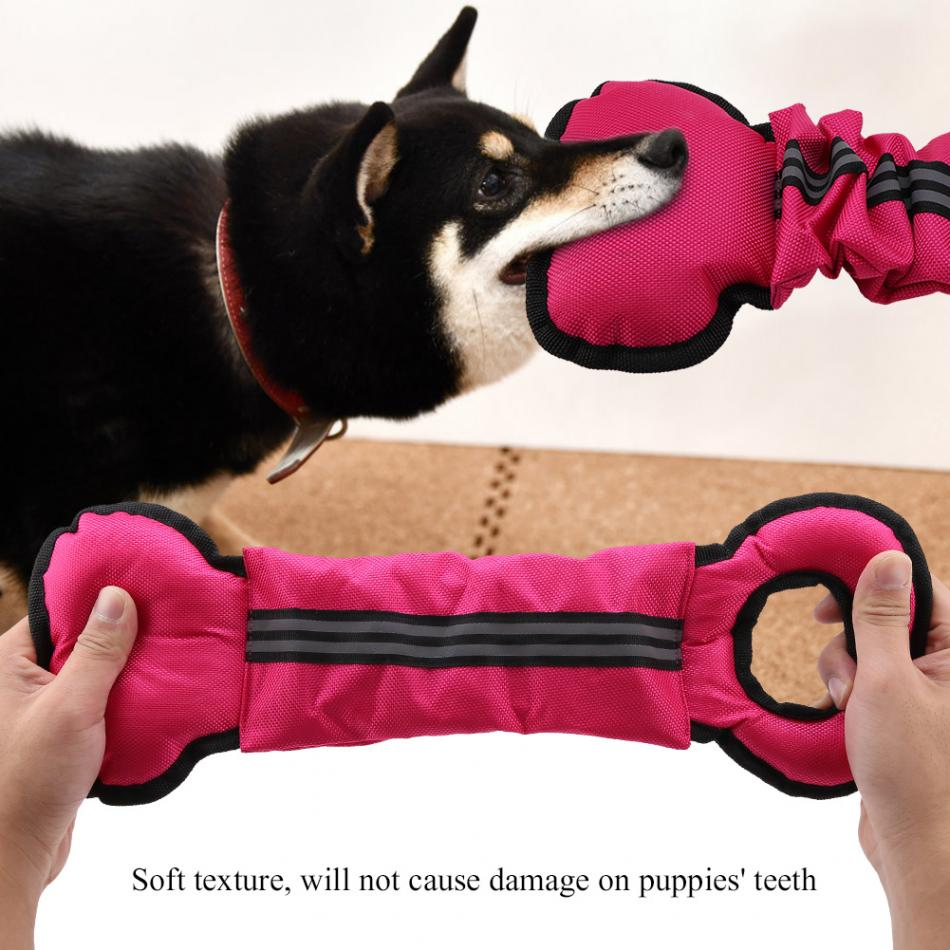 New Style Pets Dog Chew Toys Dog Tug Toy Bone Shape Dogs Interactive Training Pet Interactive Toys 3 Colors Available