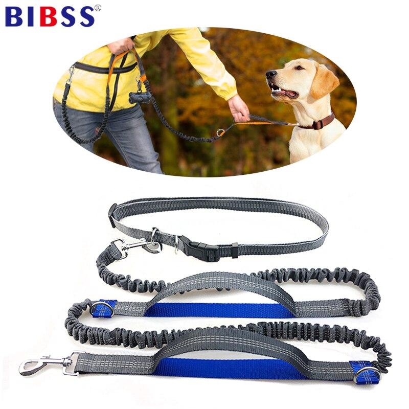 Dual Handle Reflective Dog Leash Hands Free Retractable