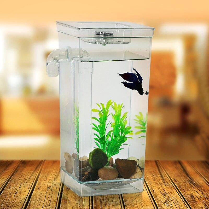 Aquarium for betta fish 1000 aquarium ideas for Small fish tanks