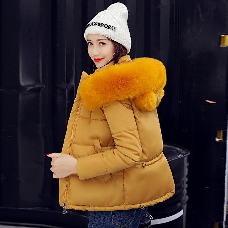 Limitée Coton green Le Polyester Robe gules Temps Flocage Black Coréenne D'hiver 2018 Zipper Petit Usure Mince Veste Dans De yellow Manteau qAwdI7H