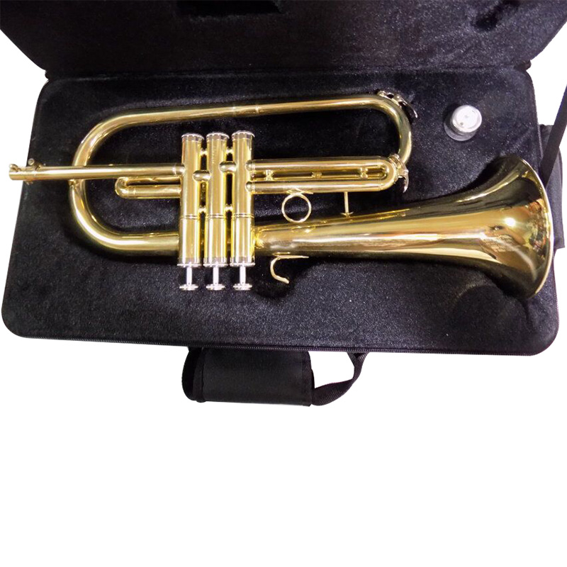 Купить с кэшбэком Bb Flugelhorn with case mouthpiece Yellow Brass FlugelHorn Musical Instruments