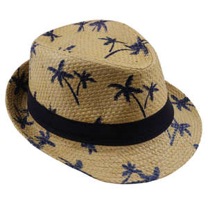 f86a8f9a LNPBD Summer straw Beach Sun hat panama Hat girl Children